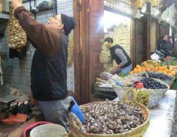 Marocco Città imperiali 2016  18