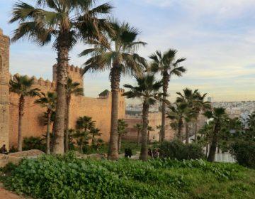 Marocco Città imperiali 2016  2
