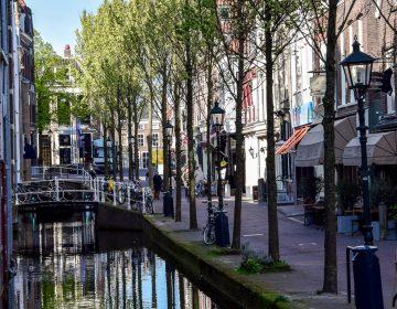 Olanda 2017 2