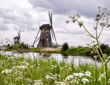 Olanda 2017 5