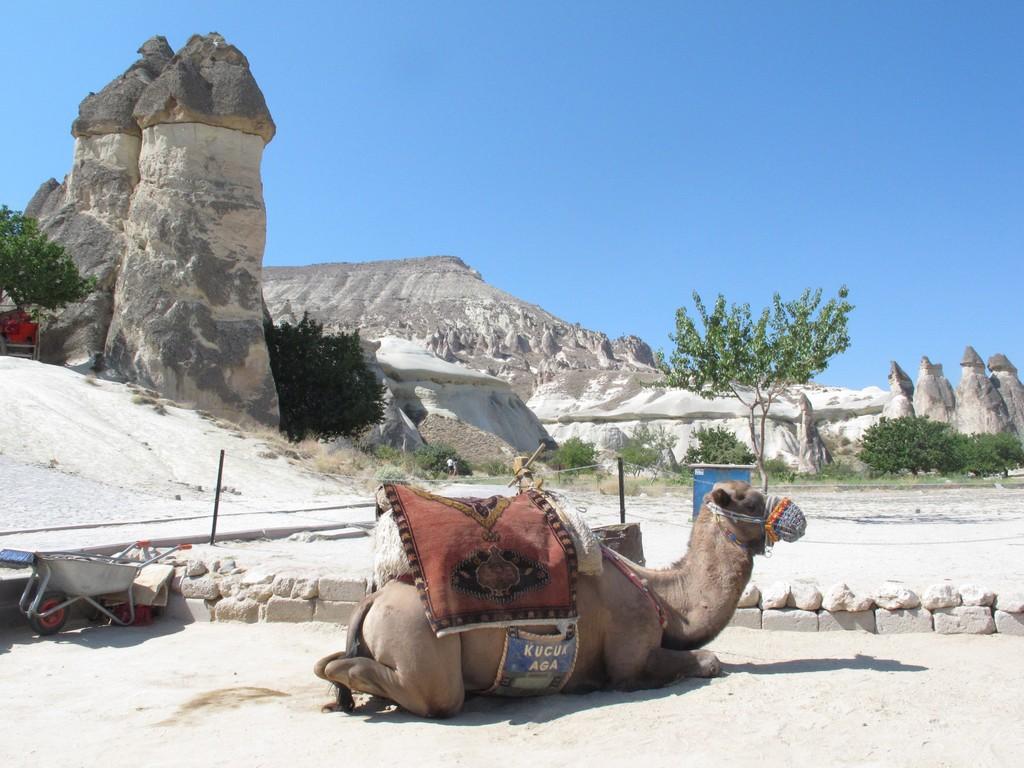 Ioviaggioincamper Turchia Classica Agosto 2014 (43)