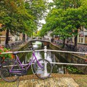 Olanda 5