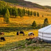 Mongolia Copertina
