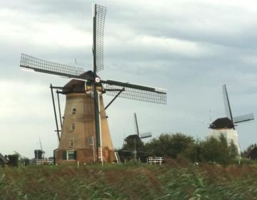Olanda 1