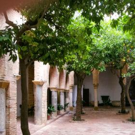Andalusia 102