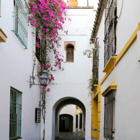 Andalusia 114