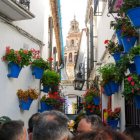 Andalusia 126